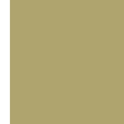 icon 25